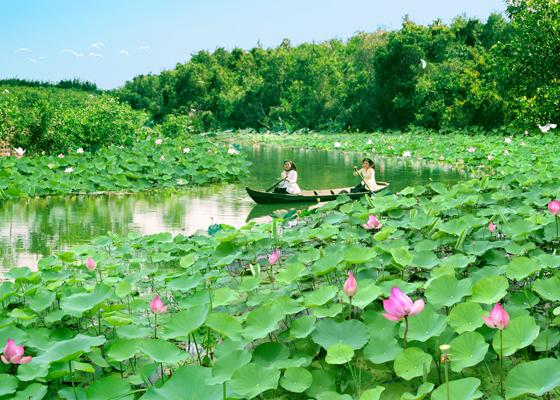 Địa điểm hút khách khi du lịch Đồng Tháp